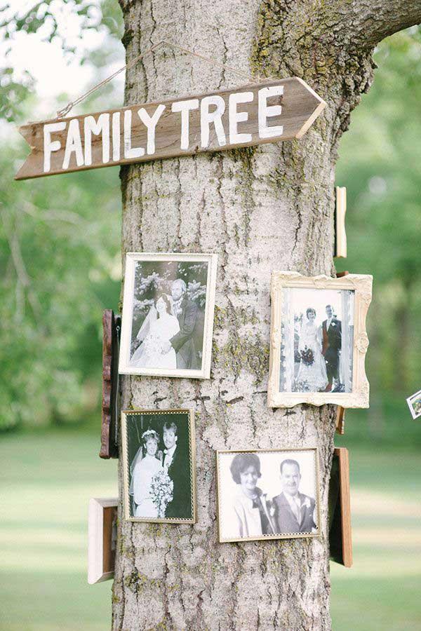 Familie boom met foto´s van meerdere generaties