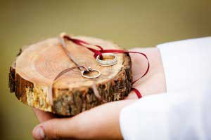 Ringendrager met ringen op stukje boomstronk