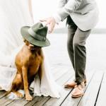 Hoed bruidegom