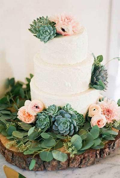 Bruidstaart vetplantjes
