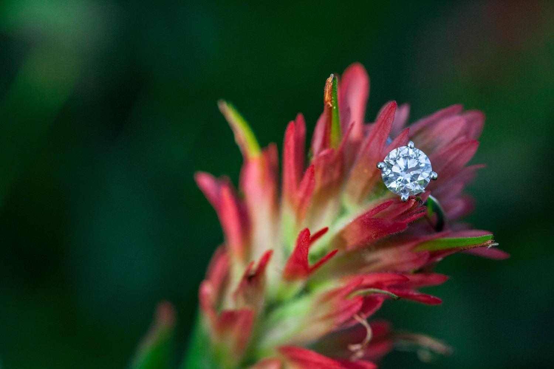 Verlovingsring in bloem