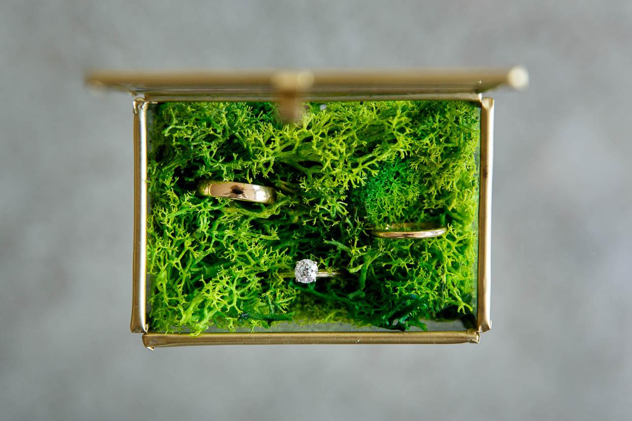 Glazen trouwringendoosje met mos